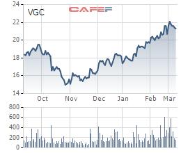 Nhóm Gelex đã sở hữu 9,8% cổ phần Viglacera ngay trước thềm phiên đấu giá của Bộ Xây dựng - Ảnh 1.