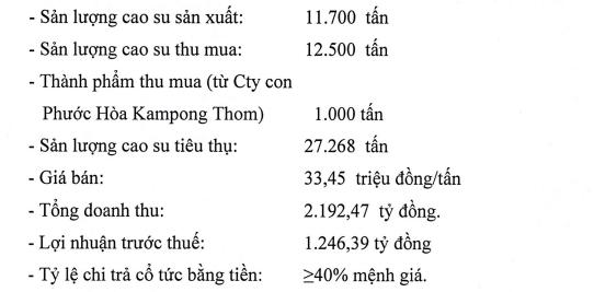 Công ty mẹ Cao su Phước Hòa (PHR) đặt kế hoạch 1.246 tỷ đồng LNTT, gấp đôi cùng kỳ - Ảnh 1.