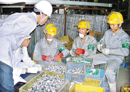 NLĐ có thể vay 100 triệu đồng để đi xuất khẩu lao động  - Ảnh 1.