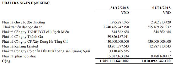 Năm Bảy Bảy: Còn nợ cọc dự án hơn ngàn tỷ, CII sắp nâng sở hữu trên 51% vốn cổ phần - Ảnh 4.