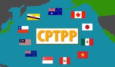 CPTPP: Từ góc nhìn an ninh-quốc phòng - Ảnh 1.