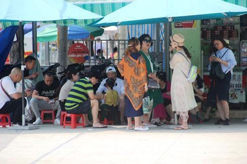 Khánh Hòa lúng túng vì tour giá rẻ - Ảnh 1.
