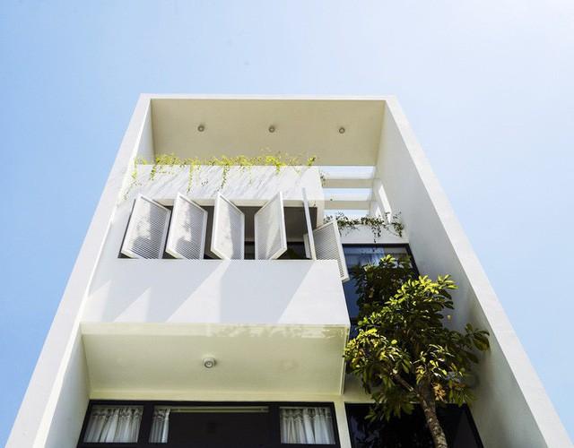 Ngôi nhà độc đáo bậc nhất Việt Nam vừa được báo Tây ngợi ca - Ảnh 3.