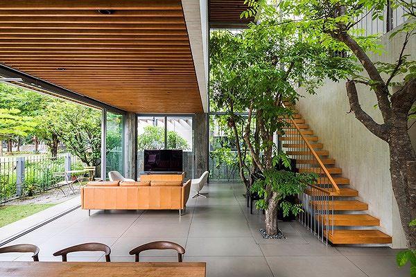 Hô biến cả rừng cây xanh vào trong nhà phố - Ảnh 3.