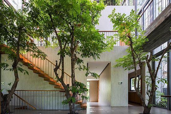 Hô biến cả rừng cây xanh vào trong nhà phố - Ảnh 4.