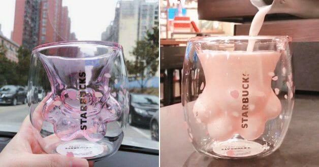 Cốc chân mèo Starbucks khiến giới trẻ Trung Quốc phát cuồng, bán lại 10 triệu vẫn thi nhau mua - Ảnh 7.