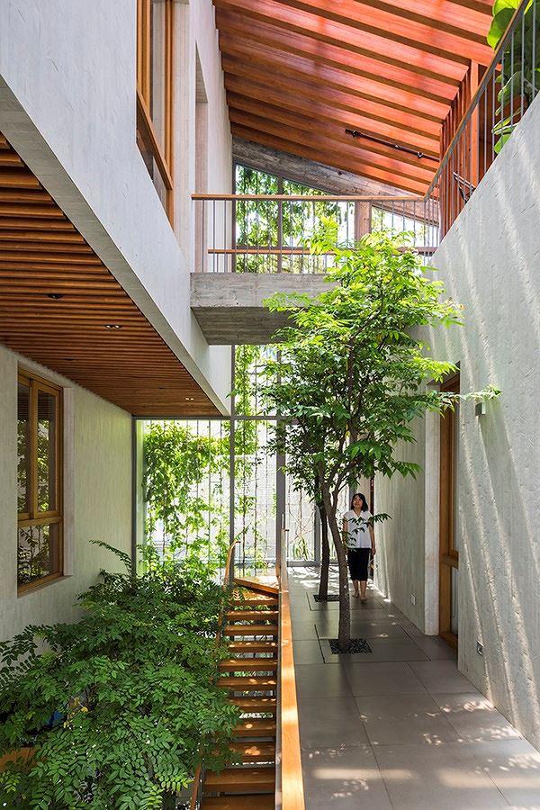 Hô biến cả rừng cây xanh vào trong nhà phố - Ảnh 9.