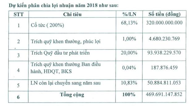 Lãi lớn, KCN Nam Tân Uyên (NTC) dự kiến chia cổ tức năm 2018 tỷ lệ 200% - Ảnh 2.