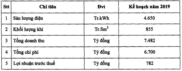 Điện lực Dầu khí Nhơn Trạch 2 (NT2): Mục tiêu lãi trước thuế 782 tỷ đồng năm 2019, giảm 5% so với cùng kỳ - Ảnh 2.