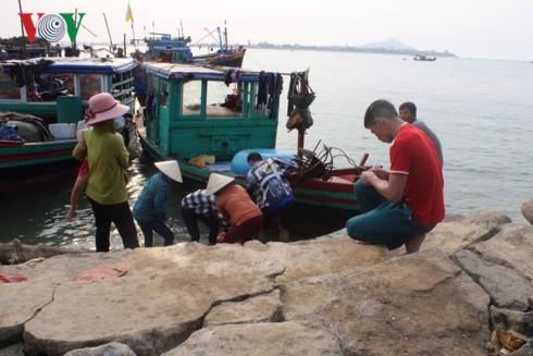 """Ngư dân Hà Tĩnh thu tiền triệu mỗi ngày nhờ trúng """"lộc trời"""" sò lụa - Ảnh 8."""