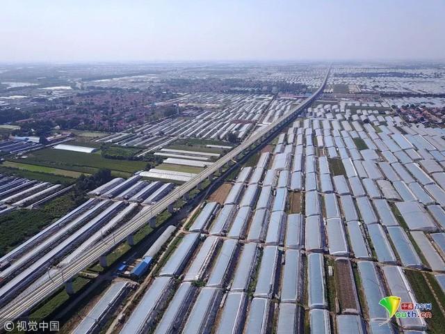 Trung Quốc đang nuôi hơn 1,4 tỷ dân của mình như thế nào? (Phần 1) - Ảnh 22.