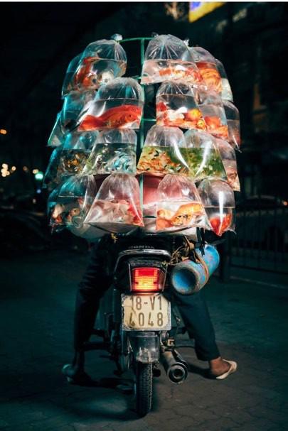 Xuất hiện trên báo nước ngoài, Hà Nội được mệnh danh là thành phố của những chiếc xe máy - Ảnh 2.