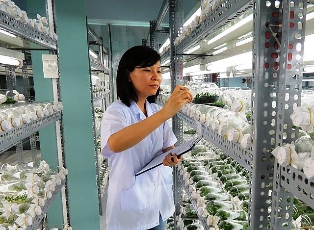 Chính phủ và quyết tâm tạo lực đẩy cho startup công nghệ Việt Nam và các doanh nghiệp nghiên cứu khoa học phát triển - Ảnh 2.