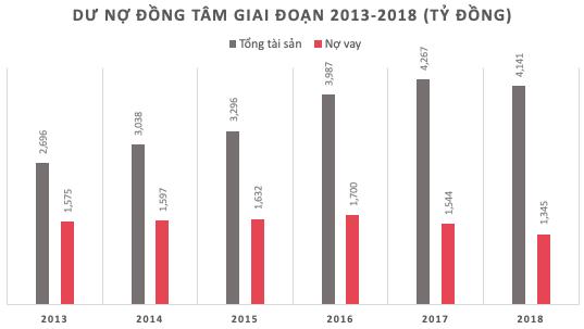 Lợi nhuận năm 2018 của Đồng Tâm Group tiếp tục giảm về 191 tỷ, biên lợi nhuận thấp nhất sau 5 năm - Ảnh 2.