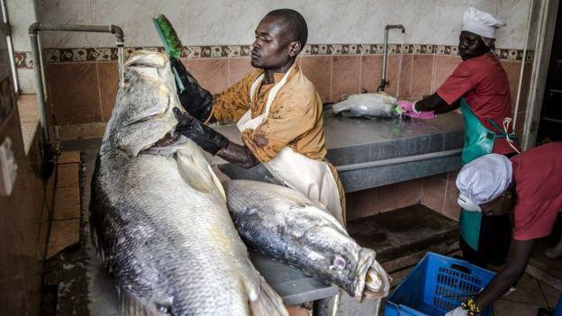 Những chiếc da cá có mùi tanh vạn người chê được nâng tầm thành những món thời trang cao cấp mang thương hiệu Dior, Salvatore Ferragamo như thế nao? - Ảnh 2.