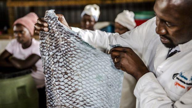 Những chiếc da cá có mùi tanh vạn người chê được nâng tầm thành những món thời trang cao cấp mang thương hiệu Dior, Salvatore Ferragamo như thế nao? - Ảnh 3.