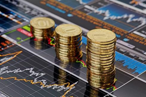Nhiều doanh nghiệp ngưng kế hoạch phát hành tăng vốn - Ảnh 2.