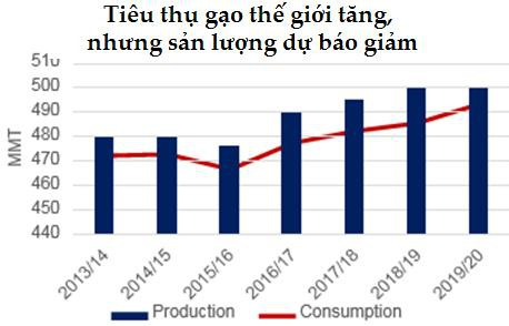 Dự báo toàn cảnh thị trường lúa gạo thế giới năm 2019/2020 - Ảnh 1.