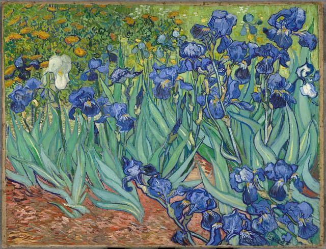 [Chuyện đẹp] Nỗi buồn của Van Gogh - Ảnh 2.