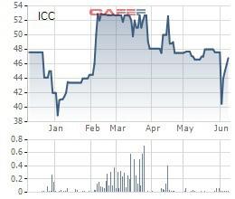 ICC chốt danh sách cổ đông trả cổ tức bằng tiền tỷ lệ 47% - Ảnh 1.