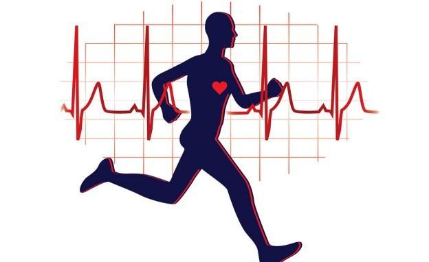 Vì sao đi bộ là bài tập tốt nhất cho sức khỏe và tâm trí, tới mức chỉ nửa giờ mỗi ngày, cuộc sống có thể hoàn toàn thay đổi?  - Ảnh 1.