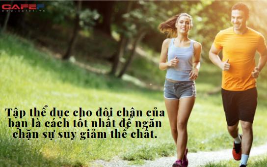 Vì sao đi bộ là bài tập tốt nhất cho sức khỏe và tâm trí, tới mức chỉ nửa giờ mỗi ngày, cuộc sống có thể hoàn toàn thay đổi?