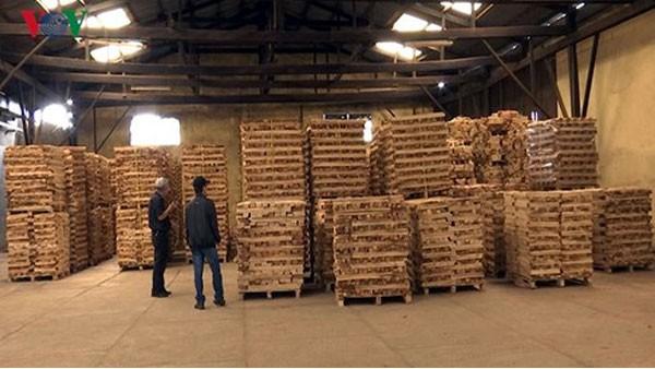 """Doanh nghiệp gỗ """"tỉnh táo"""" khi đầu tư FDI từ Trung Quốc gia tăng - Ảnh 1."""