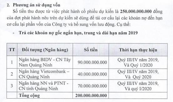 Xi măng Quảng Ninh (QNC) phát hành 25 triệu cổ phiếu chào bán riêng lẻ, giá gấp 3 thị giá - Ảnh 2.