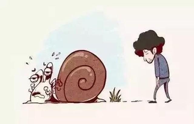 Câu chuyện Dắt con ốc sên đi dạo - bài học dạy con ý nghĩa cha mẹ nên đọc ít nhất 1 lần - Ảnh 3.