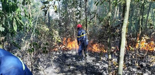 Đà Nẵng: Cháy lớn suốt 5 giờ khiến 3 hecta rừng bị thiêu rụi  - Ảnh 3.