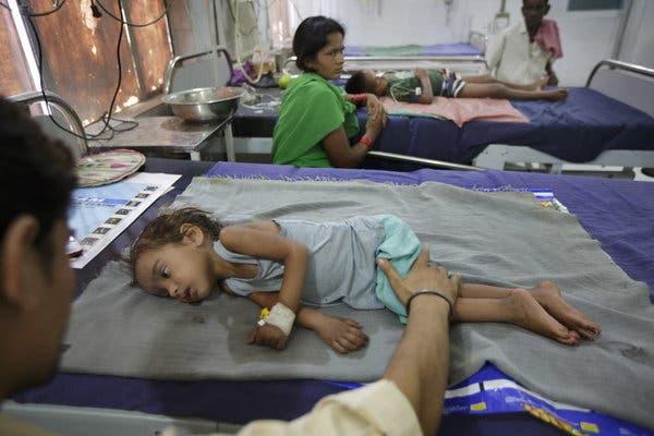 Vì thói quen ăn vải kiểu này, mỗi năm hơn 100 trẻ em ở miền bắc Ấn Độ đã tử vong - Ảnh 1.