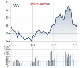 Sau giai đoạn thăng hoa với cổ phiếu tăng gấp 3 năm 2018, thủy sản Nam Việt (ANV) đang đau đầu bởi tỷ giá, thị trường cá tra đảo chiều mạnh - Ảnh 6.