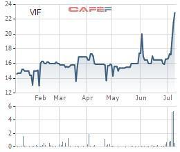 Vinafor (VIF) thông qua nghị quyết trả cổ tức bằng tiền mặt với tỷ lệ 20%, cổ phiếu tăng gần gấp rưỡi chỉ trong 1 tháng - Ảnh 1.