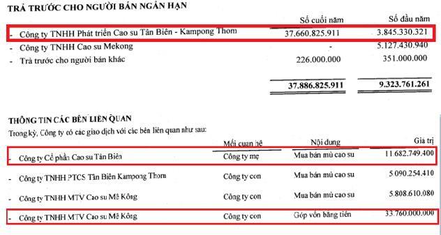 Cao su Tân Biên – Kampong Thom (TKR): Quý 2 thoát lỗ nhờ nguồn thu tài chính - Ảnh 1.