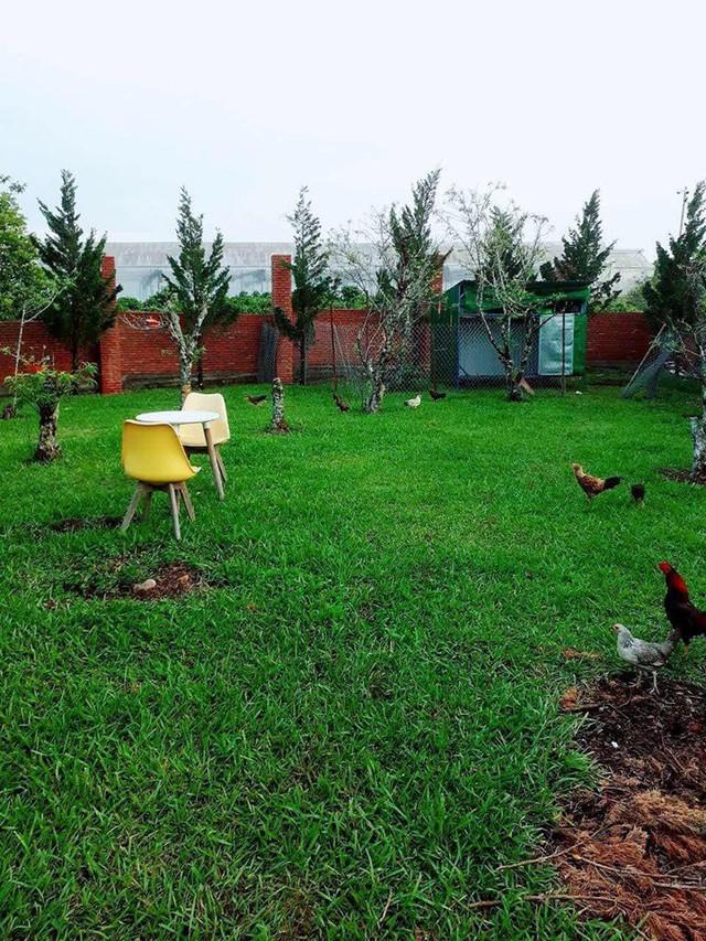 Đến người giàu như Lý Nhã Kỳ cũng chọn về quê trồng rau nuôi gà: Nữ diễn viên vô cùng hồ hởi trong những trang phục quê mùa, dép tổ ong - Ảnh 3.