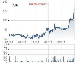 Cảng Đồng Nai (PDN): Lãi quý 2 đi ngang cùng kỳ, 6 tháng hoàn thành 56% kế hoạch năm - Ảnh 1.
