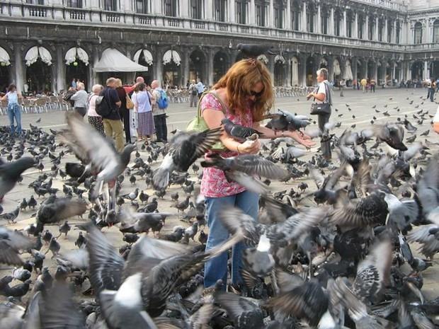 Chắc chỉ có Venice (Ý) mới có những điều luật lạ lùng như này, đến cả việc du khách… ngồi cũng cấm đoán - Ảnh 5.