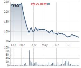 Cổ phiếu YEG tiếp tục tìm đáy mới - Ảnh 1.