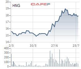HAGL Agrico sắp phát hành 221 triệu cổ phiếu để chuyển đổi trái phiếu cho Thaco - Ảnh 2.
