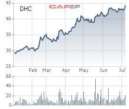 Đông Hải Bến Tre (DHC) quyết định trả cổ tức bằng cổ phiếu tỷ lệ 20% - Ảnh 1.