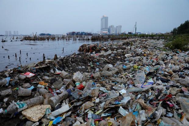 Hàng nghìn tỉ mảnh rác nhựa dưới đại dương có thể được giải quyết triệt để nhờ phát minh này - Ảnh 1.