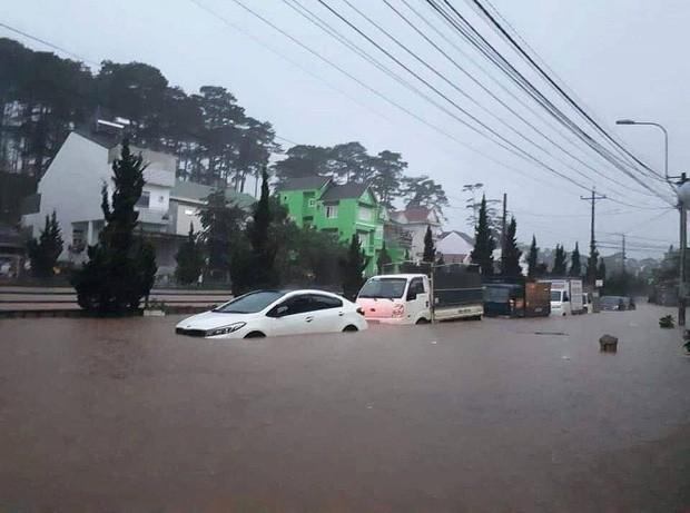 Trước khi ngập lụt lịch sử, Đà Lạt từng chứng kiến cơn sốt đất chưa từng có, giá BĐS bị đẩy lên đến 1 tỷ đồng/m2 - Ảnh 1.