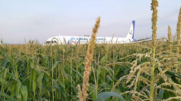 Chùm ảnh: Máy bay chở hơn 230 người nằm giữa cánh đồng ngô - Ảnh 7.