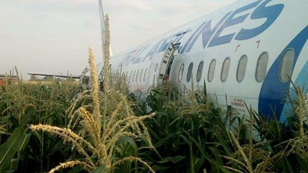 Chùm ảnh: Máy bay chở hơn 230 người nằm giữa cánh đồng ngô - Ảnh 10.