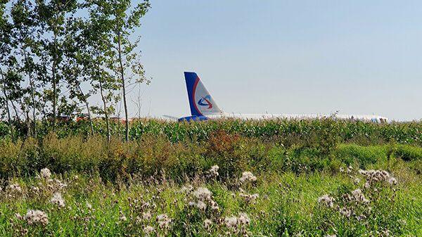 Chùm ảnh: Máy bay chở hơn 230 người nằm giữa cánh đồng ngô - Ảnh 11.