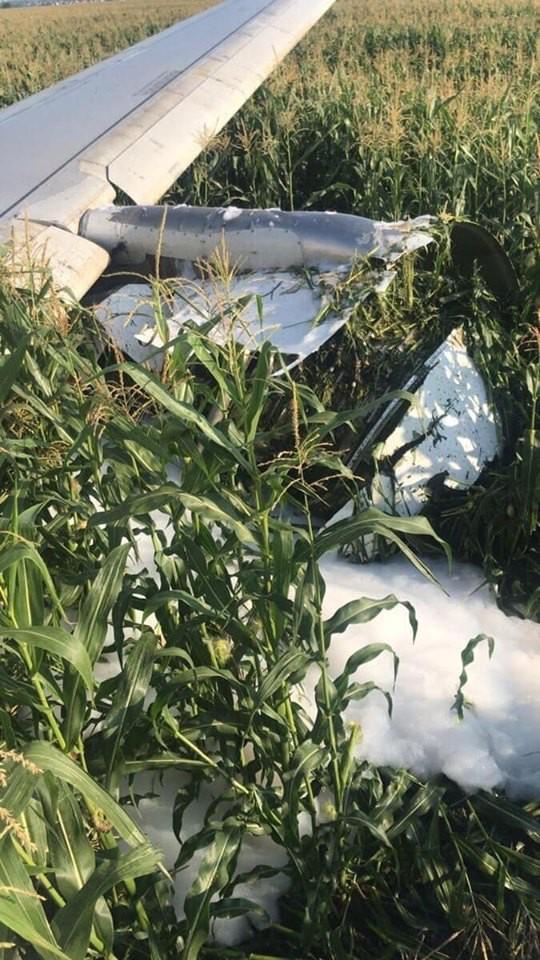 Chùm ảnh: Máy bay chở hơn 230 người nằm giữa cánh đồng ngô - Ảnh 2.
