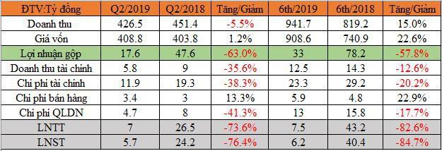 Thị trường đầu ra Trung Quốc khó khăn, Damsan báo lãi quý 2 giảm mạnh 76% - Ảnh 1.
