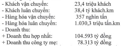 Vietnam Airlines giảm kế hoạch doanh thu 2019 về mức 104.593 tỷ đồng - Ảnh 1.