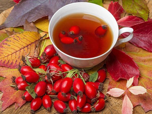 Hiểu về trà và 4 loại trà thảo dược đặc biệt tốt cho các quý ông - Ảnh 3.