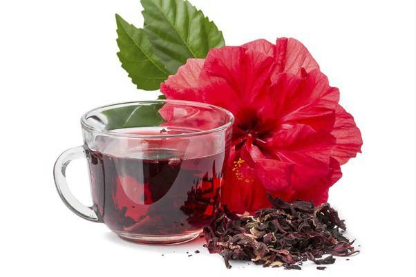 Hiểu về trà và 4 loại trà thảo dược đặc biệt tốt cho các quý ông - Ảnh 1.